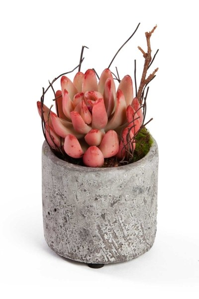 Mizalle Home Potted Artificial Flower (7X7X12)