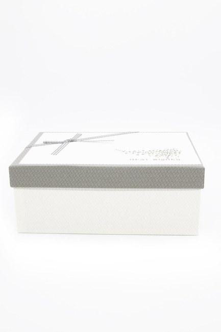 MIZALLE HOME - Ecru Rectangular Box (14x21) (1)