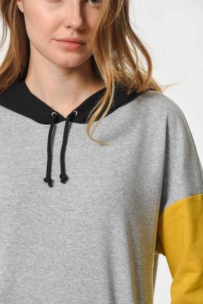 MIZALLE - Color Piece Hooded Sweatshirt (Mix) (1)