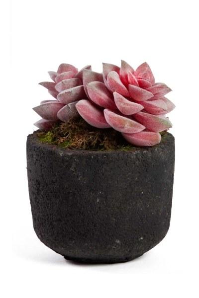 MIZALLE - زهور اصطناعية مع اناء للزهور (11x11x13) (1)